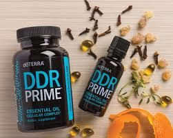 DDR prime