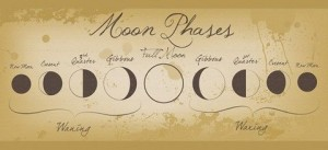 moon faze