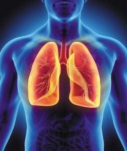 Tradičná čínska Medicína, Element KOV: pľúca a hrubé črevo